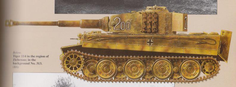 Tiger I's, Abt 506 & 507, Russia, 1944 Abt_5014