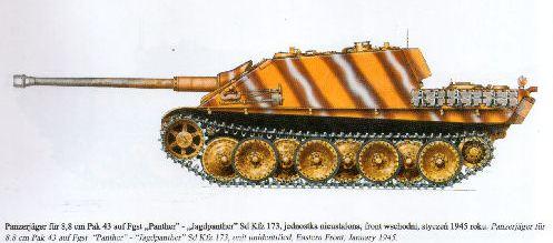 Next Project; New Tiger I or Convert HL JP to IR? Jp_cam10