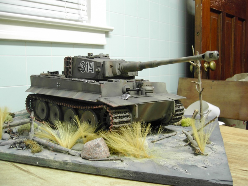 Did some Painting on the WSN Tiger Pdr_2111