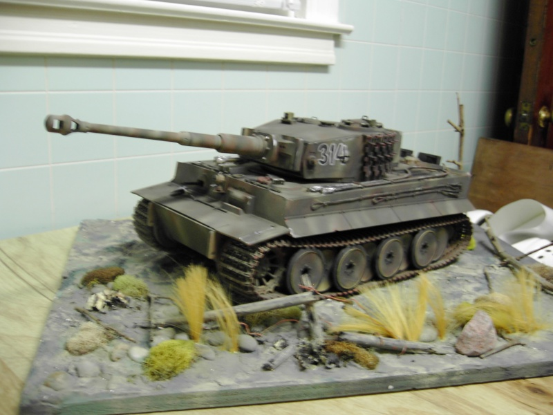 Did some Painting on the WSN Tiger Pdr_2113