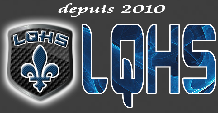 LQHS - Ligue Québecoise Hockey Simulé