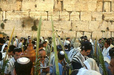 SUKKOT - Laubhüttenfest - Simcha Torah Jpeg10