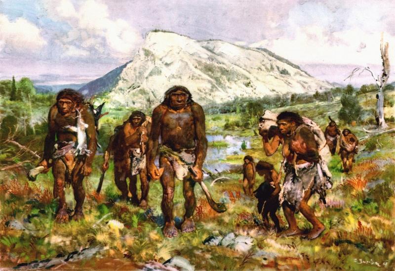 l'image de l'homme préhistorique - Page 3 30551911