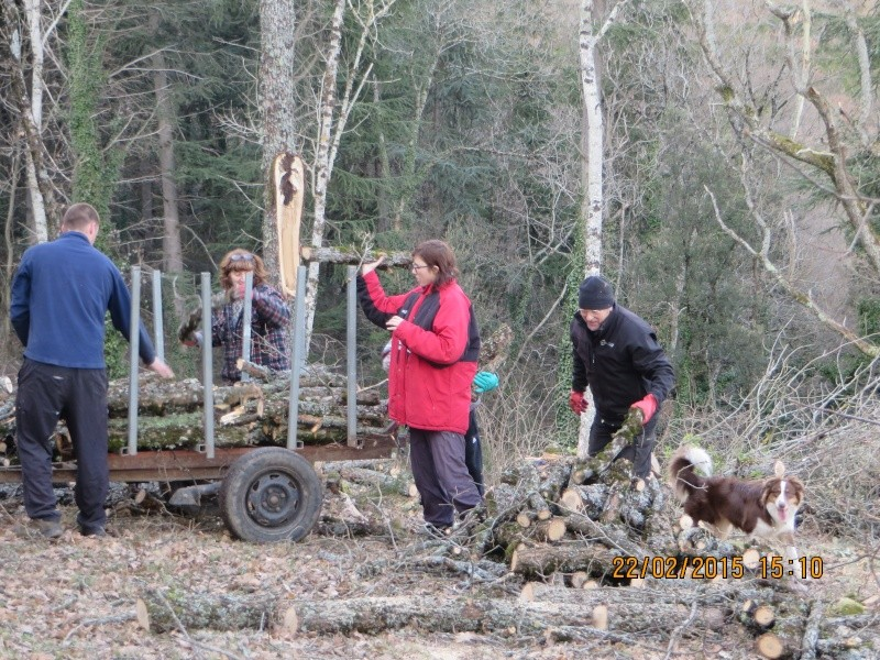 ramassage du bois sur l agrandissement de laire avec jean paul daniel le camarguais dany agnaes et aurore Ramass10