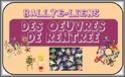 [Public] Les rallyes-liens de la CPB - récapitulatif Le_bou10
