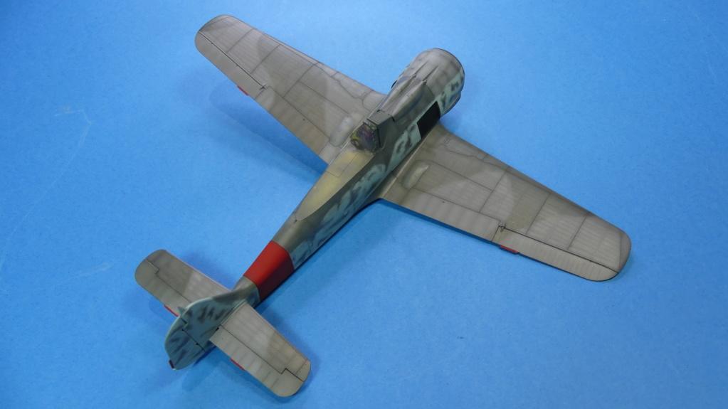 Fw 190 A-8 / Walter Köhne P1020028