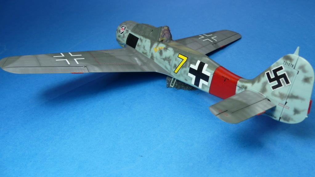 Fw 190 A-8 / Walter Köhne P1020042