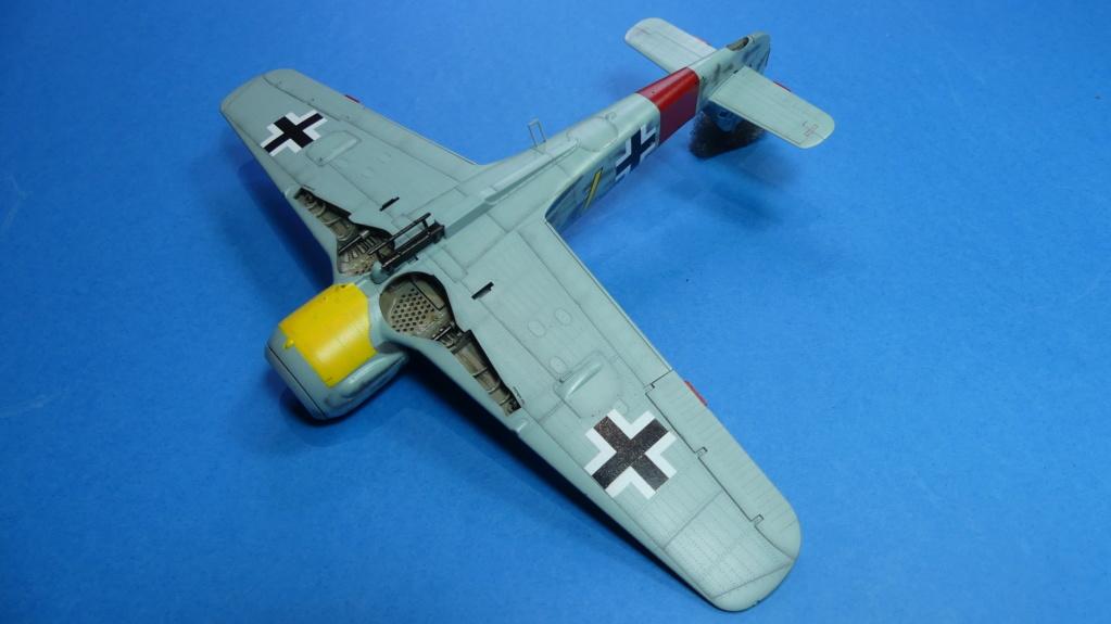 Fw 190 A-8 / Walter Köhne P1020043