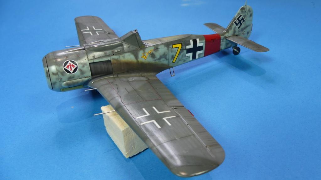 Fw 190 A-8 / Walter Köhne P1020110