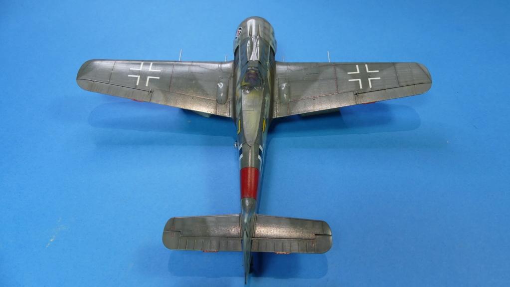 Fw 190 A-8 / Walter Köhne P1020115