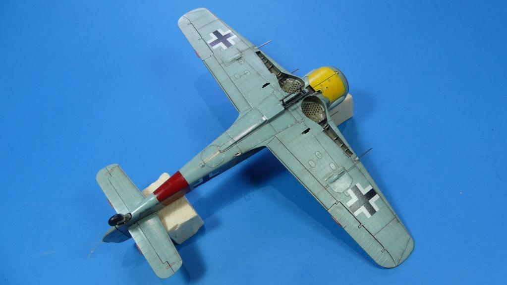 Fw 190 A-8 / Walter Köhne P1020116