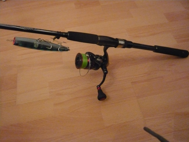 Daiwa Tournament SW AGS 802HFS P1050919