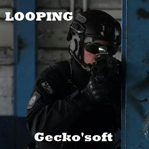 Membres Geckosoft 2014-010