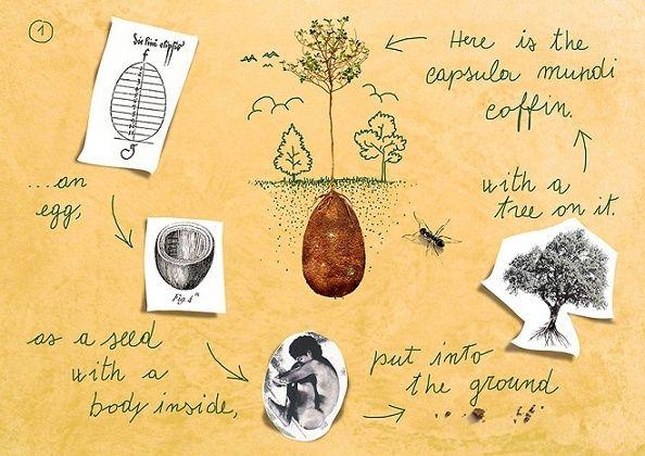 Les Cosses d'Inhumations Organiques (Organic Burial Pods) 312