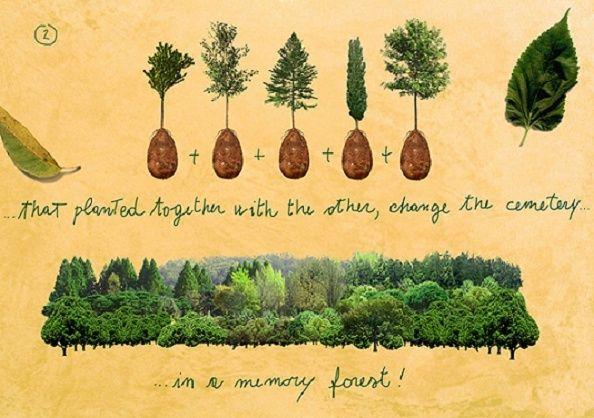 Les Cosses d'Inhumations Organiques (Organic Burial Pods) 3_13