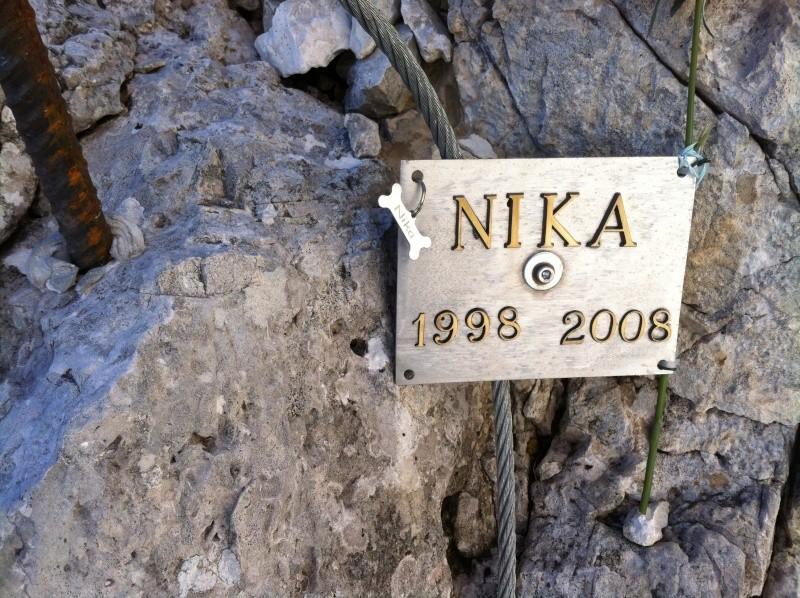 Nika, il lumino... Poi? Img_0312