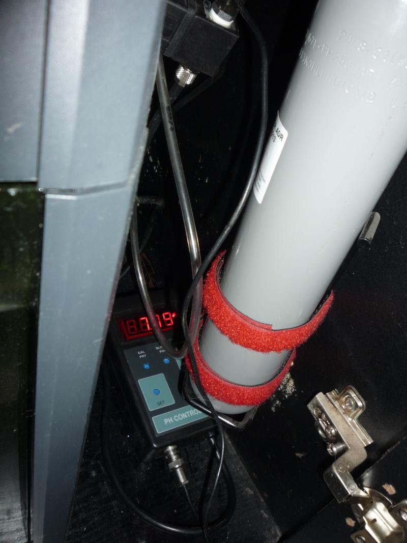 Mise en place du CO2 P1080213