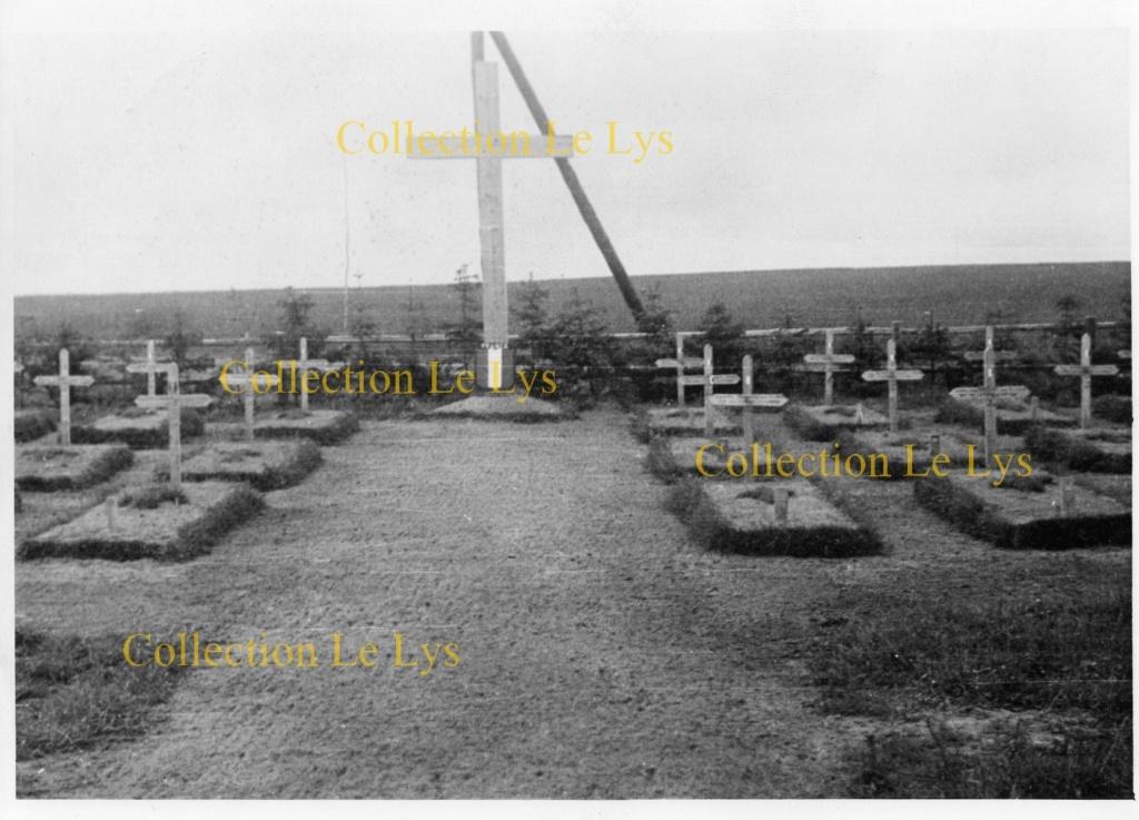 Un trésor photographique... LVF, milice, Pétain,... Img02210