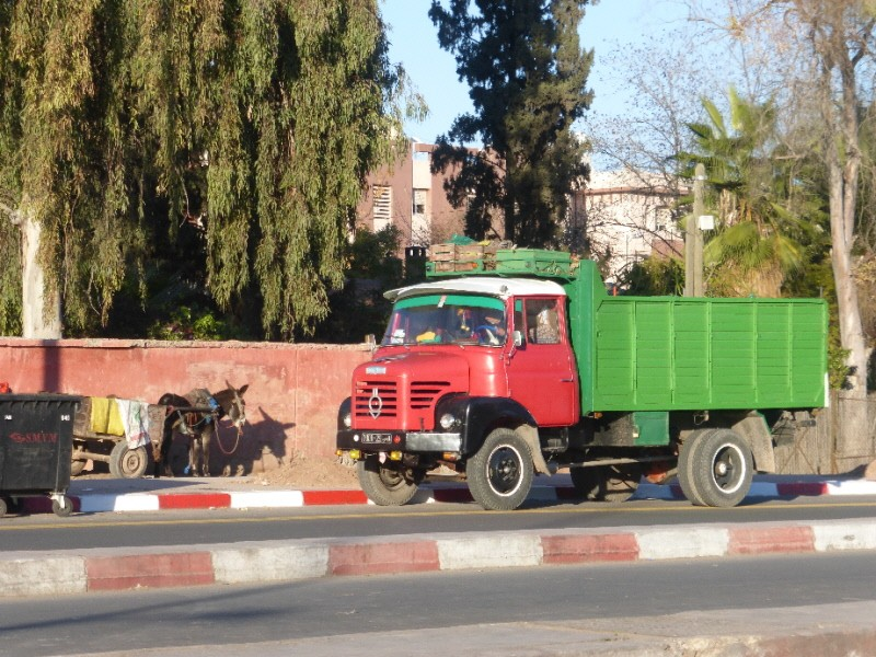 Au Maroc... P1010010
