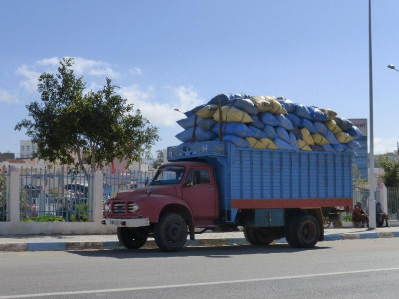 Au Maroc... P1010617