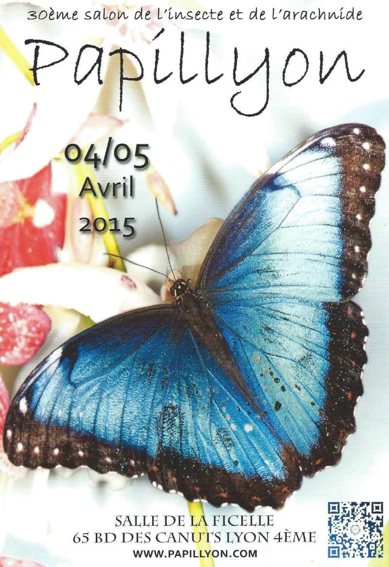 Papillyon 2015 Affich10