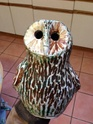 Briglin Owl or Rosemary Wren? Img_2013