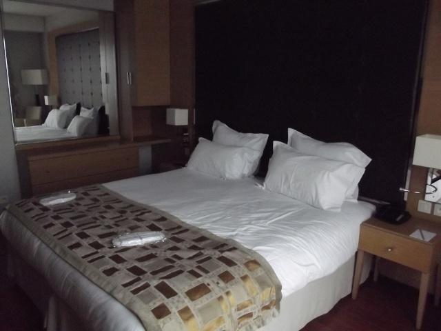 TR séjour du 16 au 19 février: 1 nuit au Relais Spa et Séjour magique au Disneyland hôtel Dscf4212