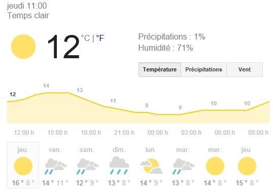 1er bain de soleil sortie d'hivernation officielle ;) pour ma pseudemys nelsoni Meteo10