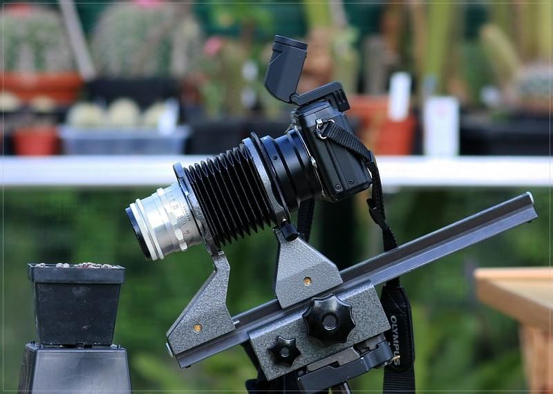 Makrofotografie mit dem Balgengerät Ff_img11