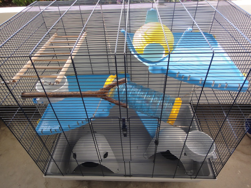RP(78) : etat neuf cage équivalent JENNY FERPLAST a vendre !! Dsc04110