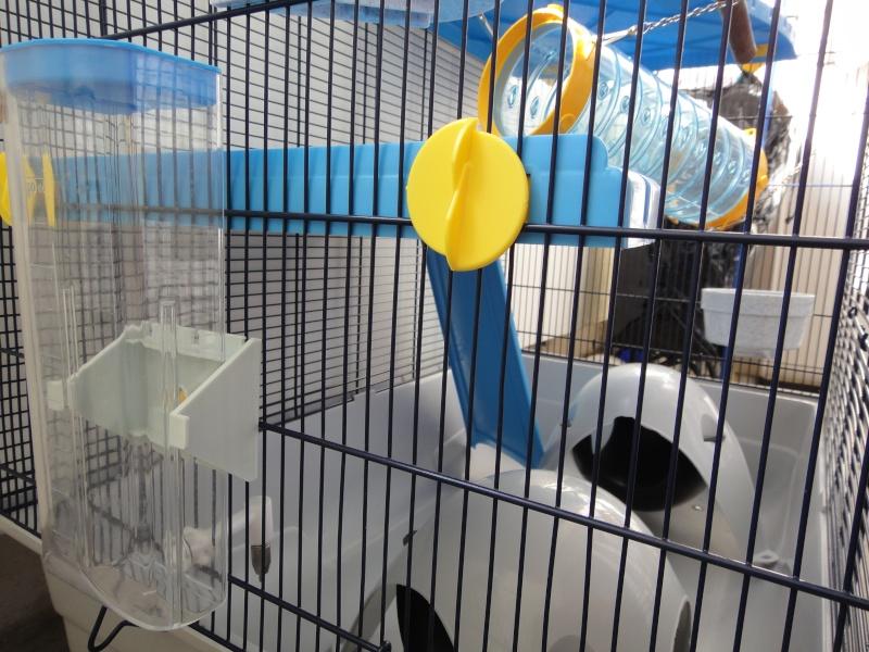 RP(78) : etat neuf cage équivalent JENNY FERPLAST a vendre !! Dsc04115