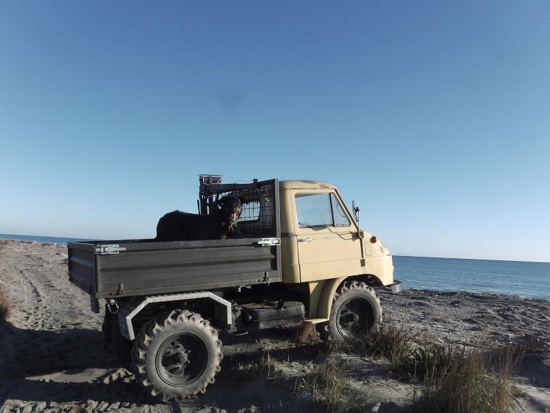 Les aventures de Tito en Corse - Page 2 Imga0814