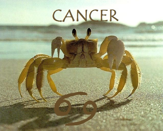 Whats your horoscope sign? Cancer11