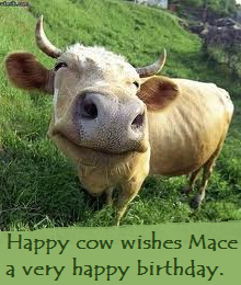 Happy Birthday Mace! Happy_10