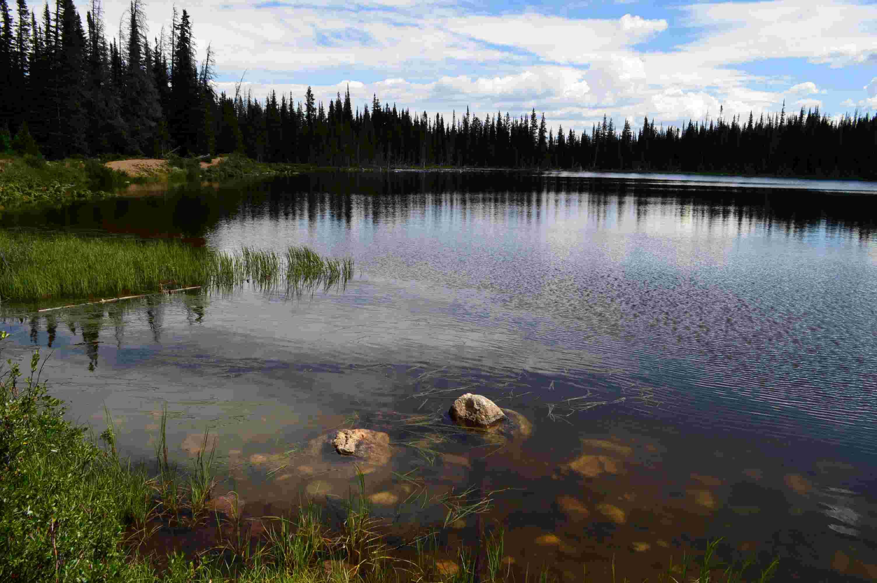 The Lake 14897010