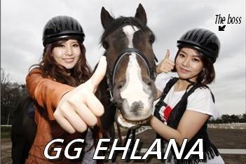 Vol et plagiat de T-ara Fansub Gg_ehl10