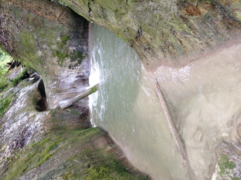 Un ruisseau prometteur... Img_1111