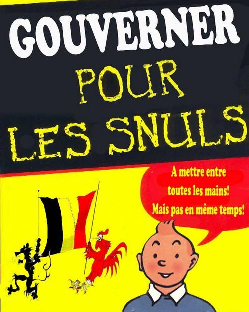 Le roi des Belges renonce à son pouvoir...  - Page 2 Snuls10
