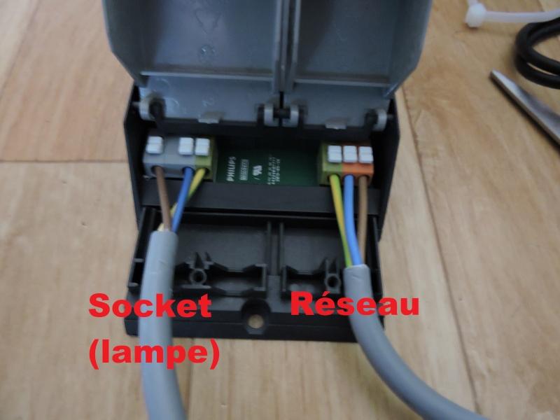 Montage d'un ballast pour ampoule 2 en 1 Solar Raptor Dscn0412