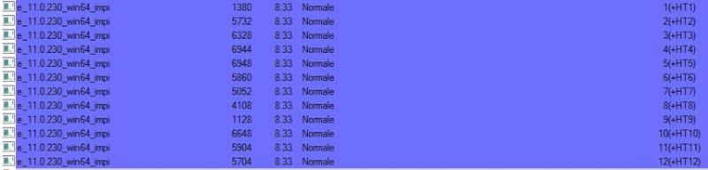 """Option """"répartir chaque instance sur un CPU différent"""" Bpm_1210"""