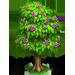 Vous cherchez un arbre ? Venez cliquer ici !!! Beauty13