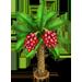 Vous cherchez un arbre ? Venez cliquer ici !!! Datetr10