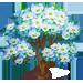 Vous cherchez un arbre ? Venez cliquer ici !!! Dogwoo13