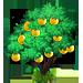 Vous cherchez un arbre ? Venez cliquer ici !!! Grapef13