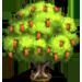 Vous cherchez un arbre ? Venez cliquer ici !!! Honeyl10