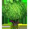 Vous cherchez un arbre ? Venez cliquer ici !!! Olive_11