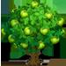 Vous cherchez un arbre ? Venez cliquer ici !!! Pondap10