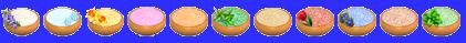 Marais Salant => Sel Sans_448