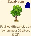 Eucalyptus Sans_t90