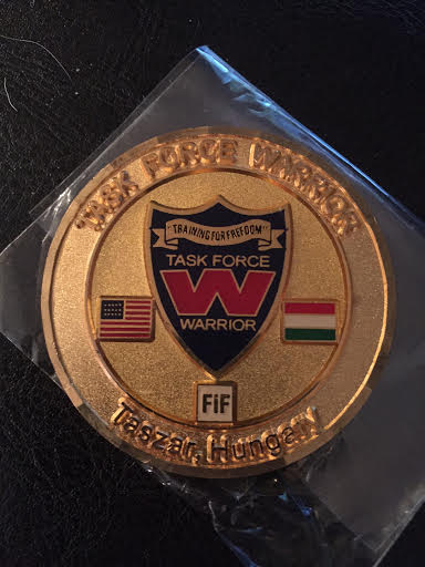 Taskforce Warrior (FIF) Challenge Coin Unname10